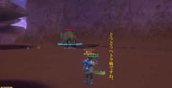 丘ソロ12.jpg